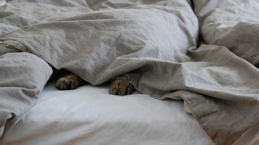 Minimalistisch gemütlich wohnen mit Decken