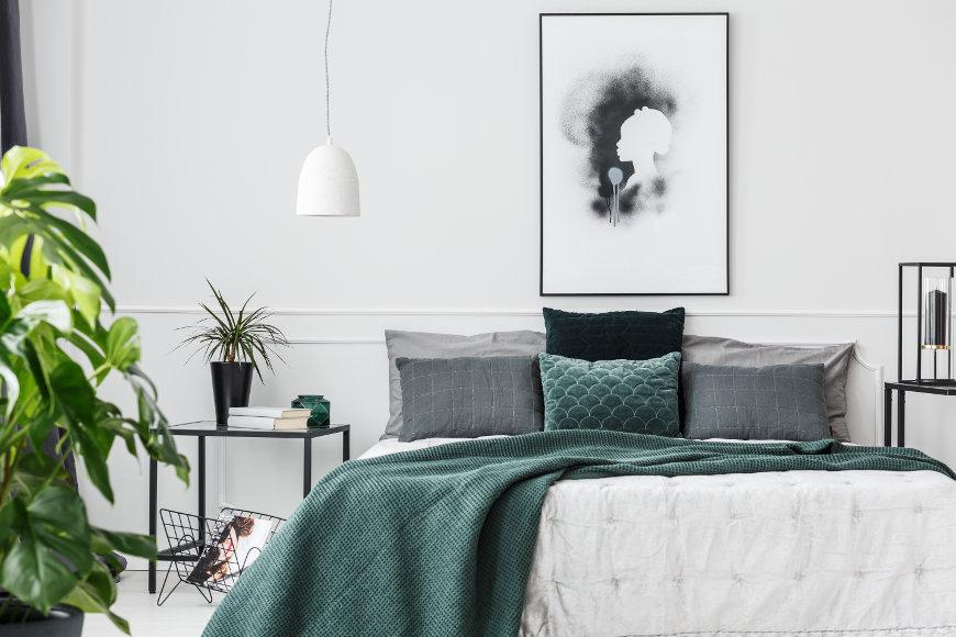 Pflanzen im Schlafzimmer: Schlaf gut in Deinem grünen ...