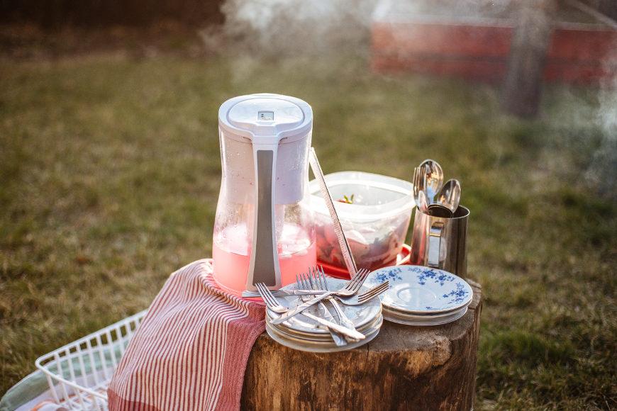 picknick-ideen-tipps