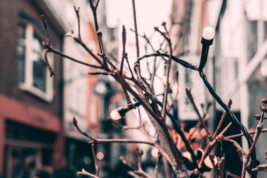 weihnachtlich-dekorieren-garten-lichterketten