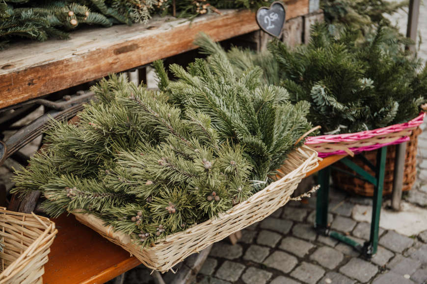 weihnachtlich-dekorieren-tannenzweige